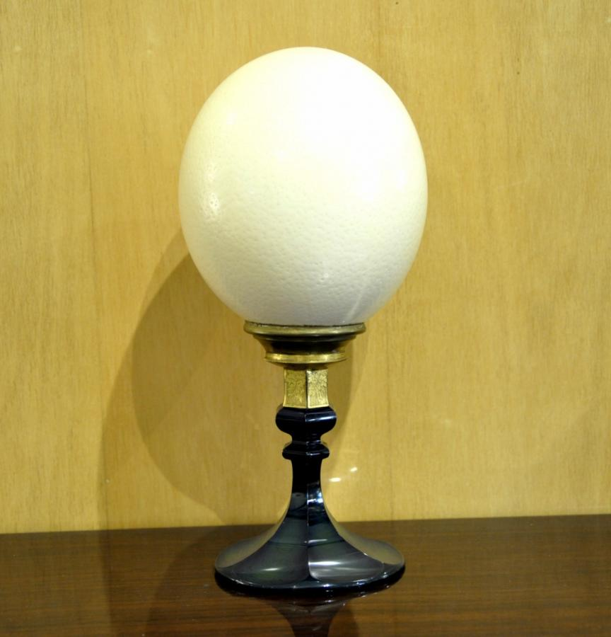 Ostrich Egg Mount Bronze & Glass, More Informations...
