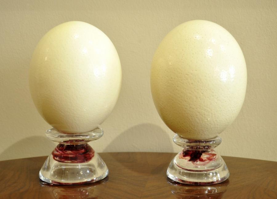 Pair Of Ostrich Eggs On Brushed Glass Supports, More Informations...
