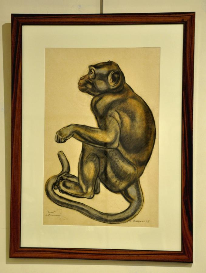 André MARGAT DRAWING PASTEL MONKEY ART DECO 1935, More Informations...